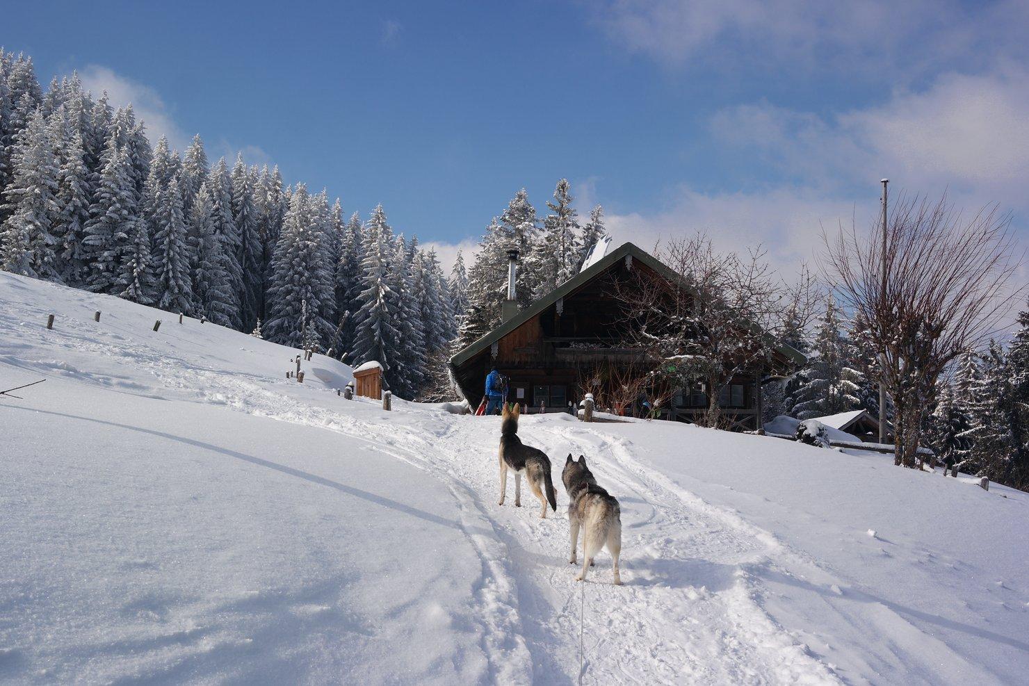 Wintermärchen – Winterwanderung zur Sigrizalm